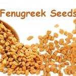 Fenugreek-Seeds-2