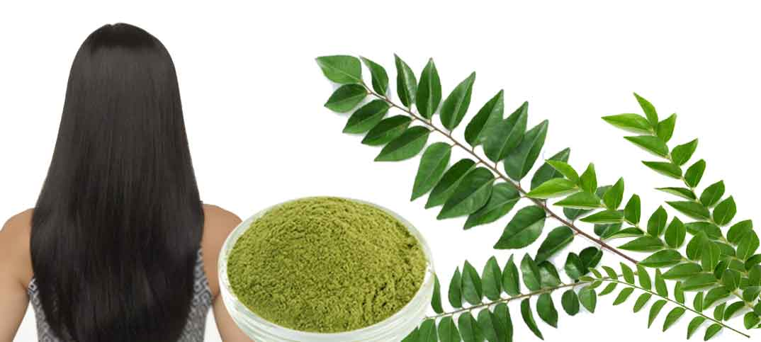 how to make curry leaves oil for hair