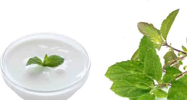 Tulsi-leaves,-Yogurt-and-mint